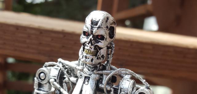 The Terminator Endoskeleton