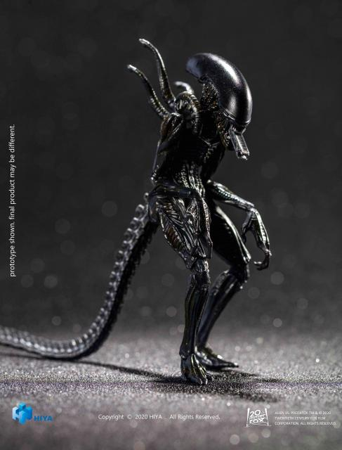 AVP Alien Warrior
