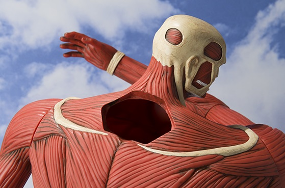 Colossal Titan Piggy Bank from Attack on Titan | CollectionDX