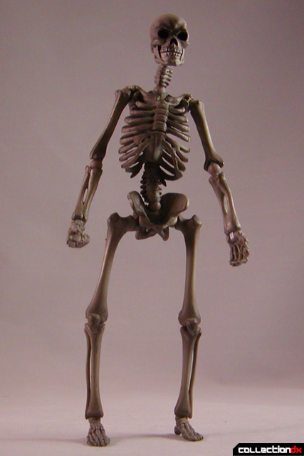 skeletonspooky