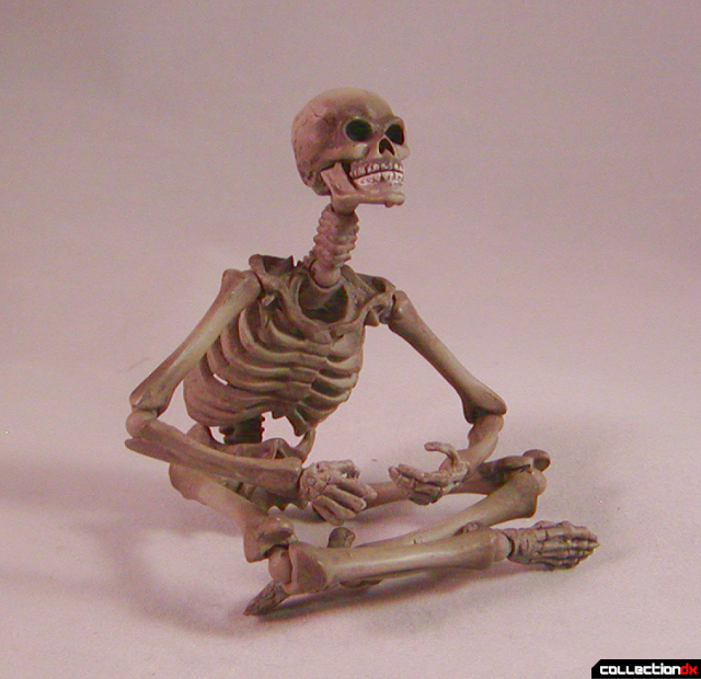 skeletonsits