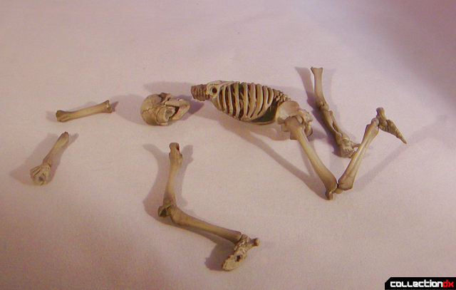 skeletonpileofbones