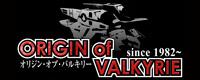 Origin of Valkyrie