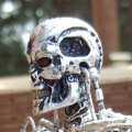 The Terminator Endoskeleton