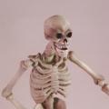 Jason and the Argonauts Skeleton Army